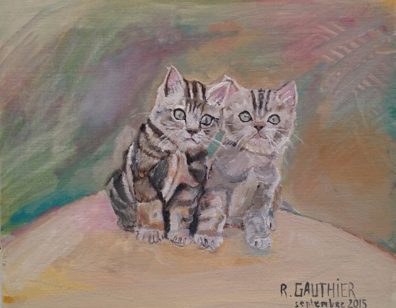 Chat: deux chatons GAUTHIER 200 €